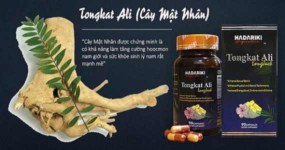 Hadariki Tongkat Ali được bào chế thành phẩm từ cây mật nhân