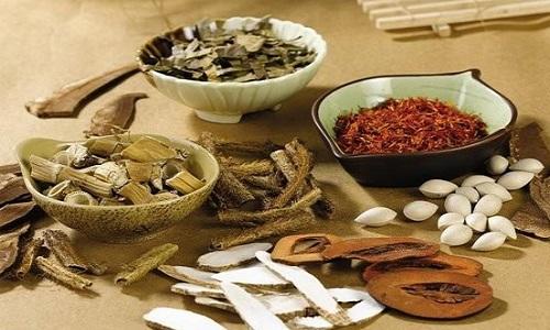 Nguyên liệu thảo dược quý làm nên thuốc bổ thận