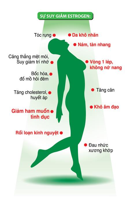 Vai trò của estrogen đối với sức khỏe nữ giới