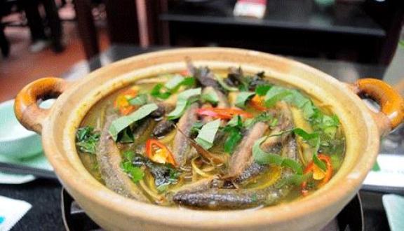 Các món ăn từ cá chạch giúp chữa liệt dương, rối loạn cương dương