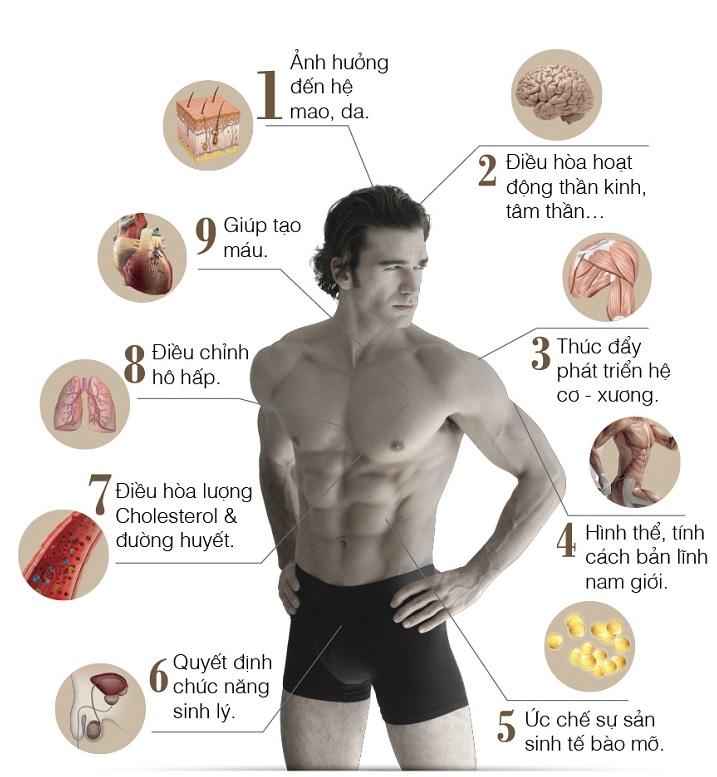 Ưu tiên lựa chọn các dòng sản phẩm có bổ sung Testosterone