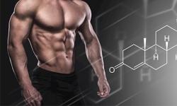 [Chia sẻ] 5 cách làm tăng Testosterone tự nhiên tốt nhất 2019 cho nam giới
